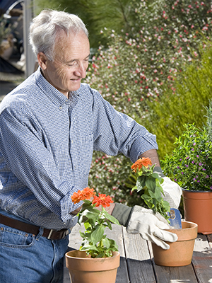 Man planting flowers in pots.