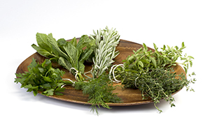 """A plate of assorted fresh herbs, mint, cilantro, sage, oregano, rosemary, dill, and thyme."