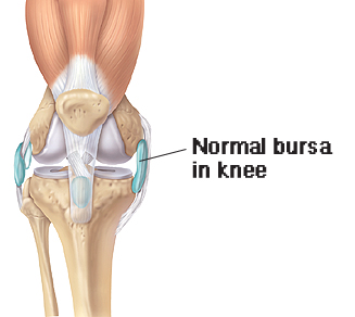 Normal bursa in knee
